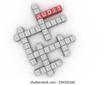 3d image Audit issues concept word cloud background