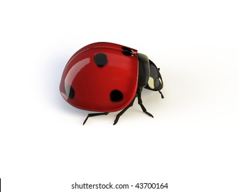 3d ladybird isolated on white