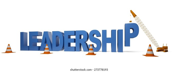 3D. Leadership, Organization, Construction.