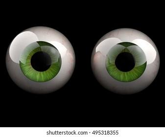 3D model rendering of the realistic human green eyeballs