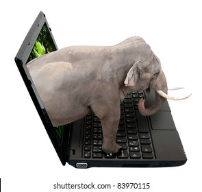 3D Netbook / Notebook With Elephant on the Screen - isolated on White