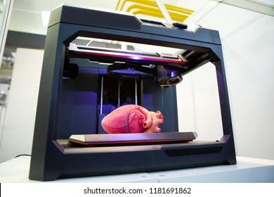 3D-Drucker mit menschlichem Herz