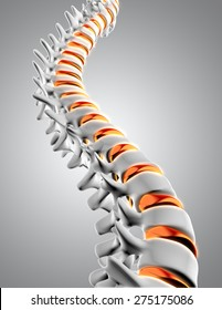 3D render of a close up of a spine with the discs highlighted