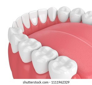 3d render of jaw model with teeth over white background