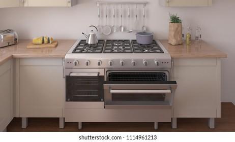 3D render of a Kitchen Interior