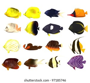 3d render of tropical fishes