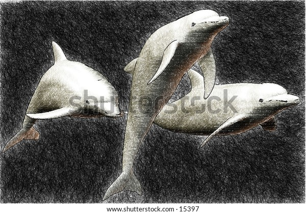 3d rendered dolphin sketch