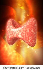 3d rendered Endocrine parathyroid gland on a color background