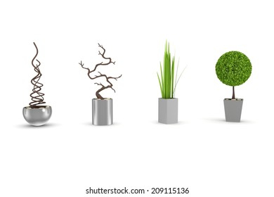 3d rendered exotic decorative plants isolated on white.