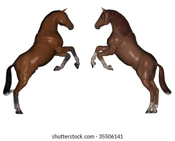 3D rendered horses isolated on white background