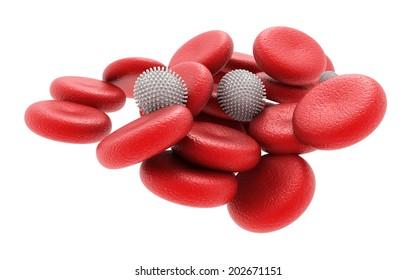 3d rendered human blood cells