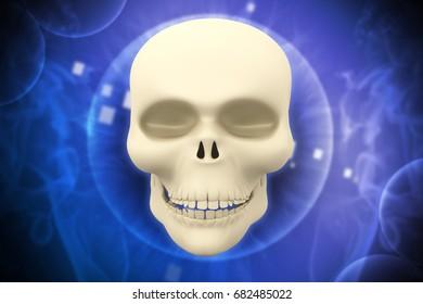 3d rendered Human skull on  color background