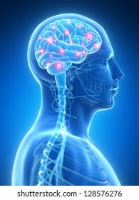 3d rendered illustration - active brain