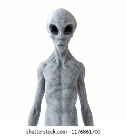 3d rendered illustration of a humanoid alien