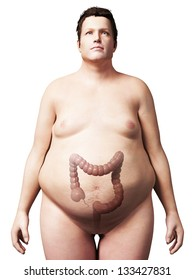 3d rendered illustration of an overweight man - colon