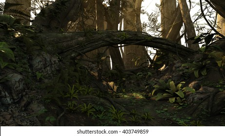 3D rendered illustration of sunset deep forest