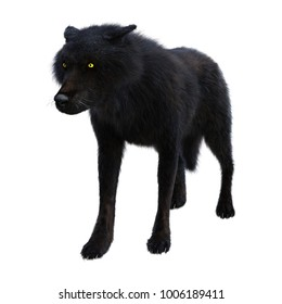 3D rendering of a black wolf isolated on white background