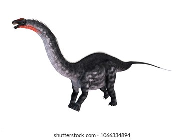 3D rendering of a dinosaur Apatosaurus isolated on white background