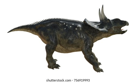 3D rendering of a dinosaur Diceratops isolated on white background