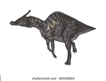 3D rendering of a dinosaur Saurolophus isolated on white background