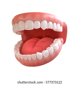 3d rendering of human teeth, open mouth on white background