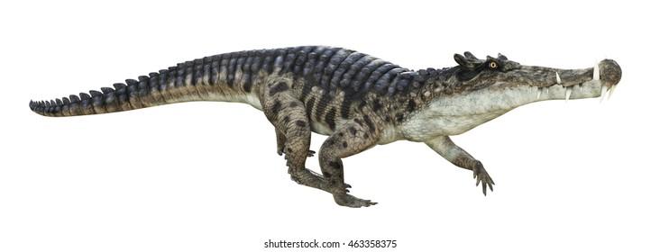 3D rendering of Kaprosuchus.