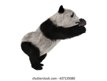 3D rendering of a panda bear cub isolated on white background