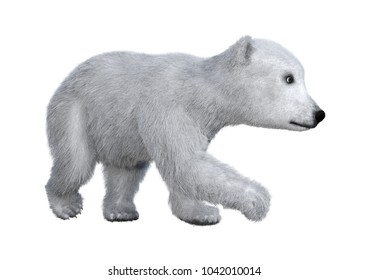 f0e26ec1fdc 3D rendering of a polar bear cub isolated on white background