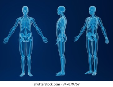 3d rendering - scan of an human body