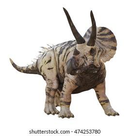 3D rendering of Triceratops Horridus.