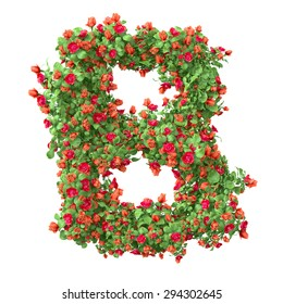 "3d ""Rose"" creative decorative letter B"