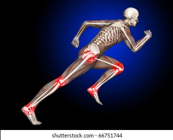3D Skeleton Running with leg and hip joints highlighted