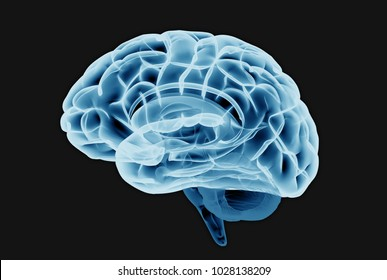 3D xray or scan brain illustration isolated on dark background with clipping path for die cut to use in any backdrop