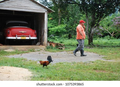 3rd of November 2013 - Scene from Cuban tobacco farm with a man walking past red vintage American car parked in a wooden garage, Vinales, Cuba