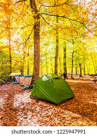 4 November 2018, Bolu-Turkey: Beautiful autumn views with green camping tent in (seven lakes) Yedigoller National Park. Bolu is a province in northwestern Turkey.