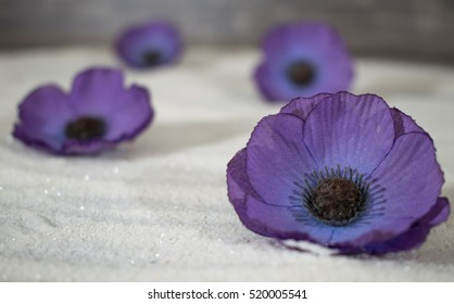 Purple poppies images stock photos vectors shutterstock 4 purple poppy flowers are lined up in the sand mightylinksfo