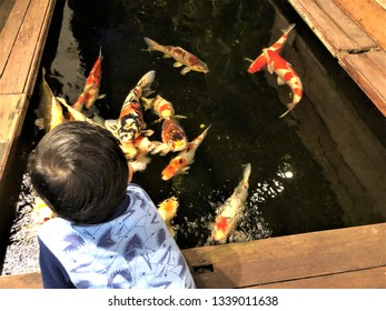 A 4 years asian boy enjoy watching and playing with the Koi Carp Fish swimming in a small pool, Huahin Thailand.