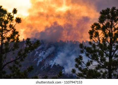 416 Wildfire Durango Colorado