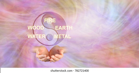 The 5 Elements of Traditional Chinese Medicine - yin yang symbol above a pair of cupped hands and the words FIRE WOOD EARTH WATER METAL against an ethereal energy background