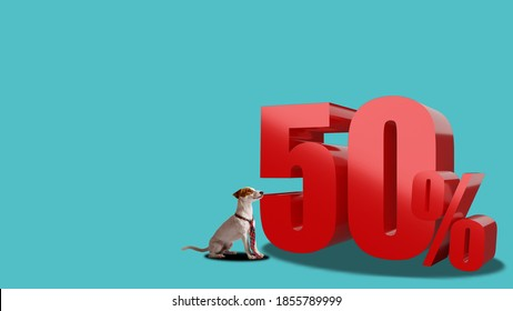 50 percent for discount or promotion of 3D rendering for your advertising.Modern promo offer price. Jack russell dog look at sell.
