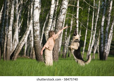 50 years old woman playing with alsatian dog on grass