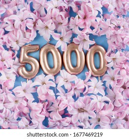 5000 followers card. Template for social networks, blogs. Background with pink flower petals. Social media celebration banner. 5k online community fans. 5 thousand subscriber