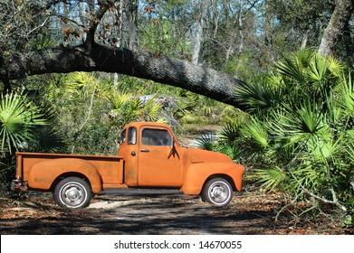 54 Chevy Pickup in the wilderness near a fallen tree.