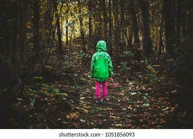 6 years old child is alone in the forest explore the world