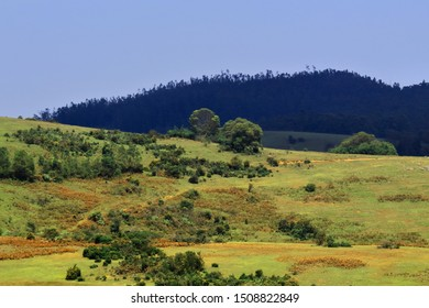 6th mile is a scenic view point at ooty in tamilnadu in india , it is also known as shooting spot