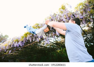 6-year old is flying in his dad's arms under a wysteria tree