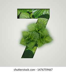 7 number seven. Nature concept. Creative number with nettle leaves on a gray background. Creative typography, Chapter in the presentation, template.