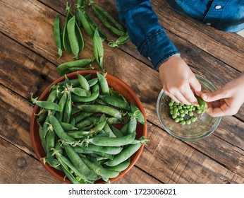 7 year old boy removing peas from their pods, only hands are shown, agriculture concept