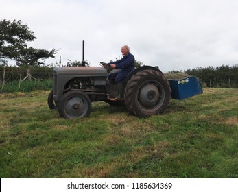 7th September 2018- A smallholder driving his 1949 Ferguson TED 20 tractor, with a Fleming link box, in a field at Llansadurnen near Laugharne, Carmarthenshire, Wales, UK.