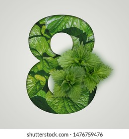 8 number eight. Nature concept. Creative number with nettle leaves on a gray background. Creative typography, Chapter in the presentation, template.